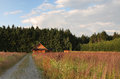 Meadow in background log cabin wood Stock Photo