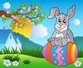 Meadow with bunny on Easter egg Royalty Free Stock Photos