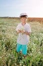 Meadow flowers boy in blue shorts and a cap walks on chamomile field Royalty Free Stock Images