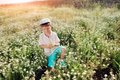 Meadow flowers boy in blue shorts and a cap walks on chamomile field Stock Images