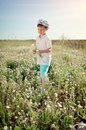 Meadow flowers boy in blue shorts and a cap walks on chamomile field Stock Image