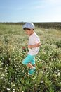 Meadow flowers boy in blue shorts and a cap walks on chamomile field Royalty Free Stock Photography