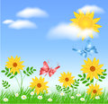 Meadow flowers and sun Royalty Free Stock Photo