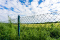 Meadow and forest behind the fence Royalty Free Stock Photo