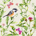 Meadow herbs, flowers, butterflies, bird. Repeated herbal pattern. Watercolor Royalty Free Stock Photo