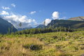 Meadow and High Tatras mountains