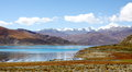Meadow by the lake a beautiful yamdrok tso in tibet Stock Image