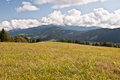 Meadow with panorama of Tatry mountains Royalty Free Stock Photo