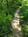 Meadow Path Stock Photos
