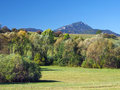 Meadow and Peak of Great Choc Mountain Royalty Free Stock Images