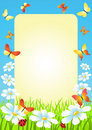 Meadow. Photoframe. Stock Photos