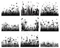 Meadow silhouettes Royalty Free Stock Photography