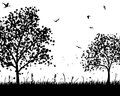 Meadow silhouettes Stock Images
