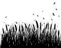 Meadow silhouettes Royalty Free Stock Images