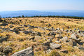 Meadow with stones in harz view of stone landscape on the mountain brocken national park germany Royalty Free Stock Photography