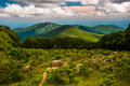Meadow and view of Old Rag from an overlook on Skyline Drive in Shenandoah National Park Royalty Free Stock Photo