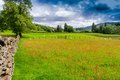Meadows of cumbria fields and in the county in england uk Royalty Free Stock Image