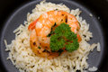 Meal with rice and shrimp Royalty Free Stock Photo