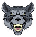 Mean Wolf Mascot Royalty Free Stock Photo