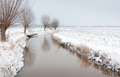 Meandering ditch in a rural landscape covered with thin layer of ice is winding through snowy agricultural row of pollard willows Stock Images