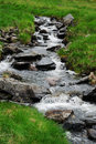 Meandering stream in green grass brook is running over pebbles its banks become overgrown with Stock Photography