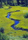 Meandering Stream Through A Meadow Royalty Free Stock Photos