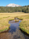 Meandering stream in meadow with mountain the clear water flows a path through a grass surrounded by the forest and lassen peak Royalty Free Stock Photography