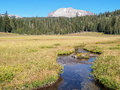 Meandering stream in meadow with mountain the clear water flows a path through a grass surrounded by the forest lassen peak the Royalty Free Stock Image