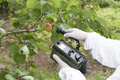 Measuring radiation levels of fruits apricot Royalty Free Stock Photography