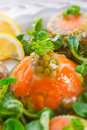 Meat aspic Royalty Free Stock Photos
