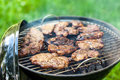 Meat barbecue Royalty Free Stock Photo
