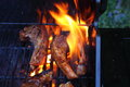 Meat on barbecue a photograph of chops with flame Royalty Free Stock Photos