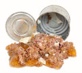 Meat canned dog food Royalty Free Stock Photo
