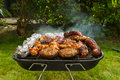 Meat collection Royalty Free Stock Photo