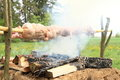 Meat cooking on opened fire chickens and rabbit roasted Royalty Free Stock Images