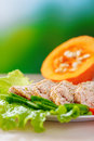 Meat dish with lettuce Stock Images