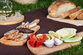 Meat food from picninc basket on grass in the garden Stock Photography