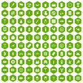 100 meat icons hexagon green