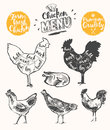 Meat menu scheme chicken cuts drawn vector Royalty Free Stock Photo
