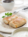 Meat pancake Royalty Free Stock Images