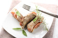 Meat rolls with salami and cheese Royalty Free Stock Photos