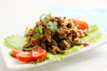 Meat in sauce beef stroganoff with tomato lettuce and cilantro Stock Photos