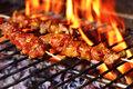 Meat skewers in a barbecue Royalty Free Stock Photo