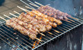 Meat skewers on grill Royalty Free Stock Photo
