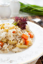 Meatless risotto vegetable mix closeup Royalty Free Stock Photos