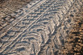 Mechanization footprints on grainy soil Royalty Free Stock Image