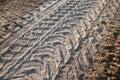 Mechanization footprints on grainy soil Royalty Free Stock Image