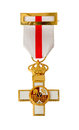 Medal awarded valor action isolated white clipping path Stock Photography