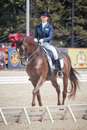 Medalist marina aframeeva horse named vosk international dressage in international park rus vivat russia orlovo moscow region Royalty Free Stock Photos