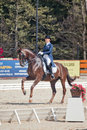 Medalist marina aframeeva horse named vosk international dressage in international park rus vivat russia orlovo moscow region Stock Image